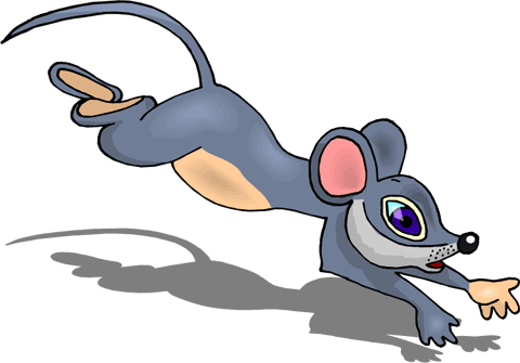 Mouse Running